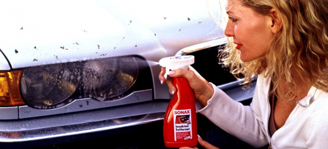 Auto pflegetipp des monats achtung lackfra im anmarsch - Was tun gegen insekten im pool ...